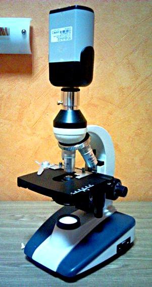 видеомикроскоп электронный микроскоп