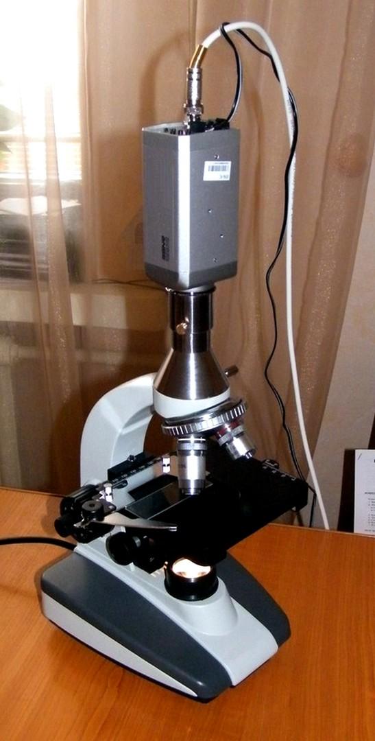 цифровой микроскоп, видео микроскоп